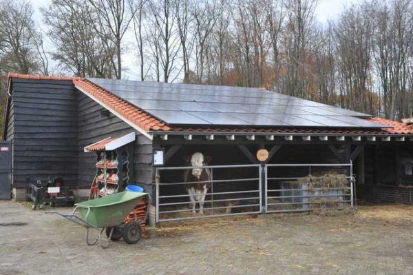 Kinderboerderij Emmelerbos in Emmeloord
